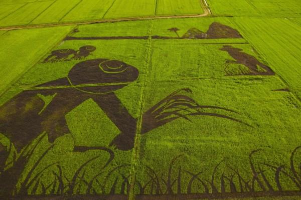 rice-thailande1-1024x682